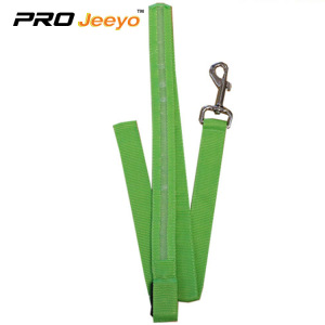 Hi Vis Safety Reflekterande Green Pets Leashes