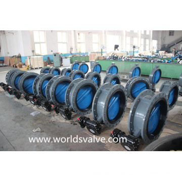 OEM Painting Disc Double Flange Butterfly Valve