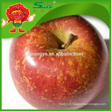 Fuji entreprises de pommes de miel fraîches vendent des pommes de fruits