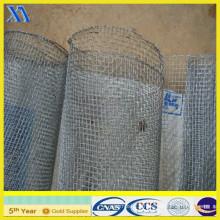 Galvanized Square Welded Iron Wire Mesh (XA-SM006)