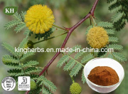 Manufacturer Supply High Quality Chinese Acacia Catechu Extract/Acacia Bark Extract