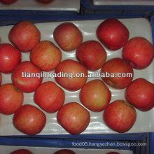Fuji apple price
