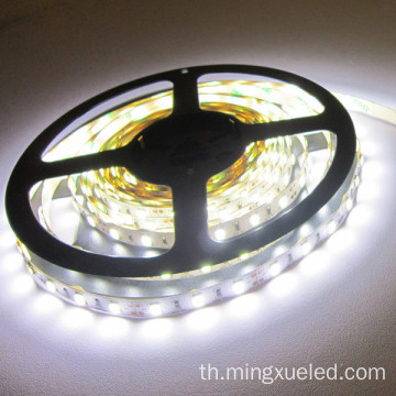 72 leds SMD 5630 กันน้ำ IP68 LED Strip