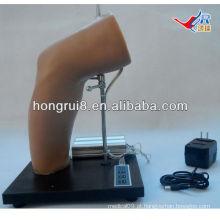 Modelo de treinamento de injeção intra-articular de cotovelo Deluxe Deluxe, treinamento de injeção articular