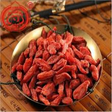 Rohe organische Goji Berry Dried Fruit