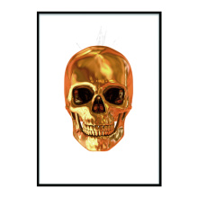 Astraware Golden Skull art display frame