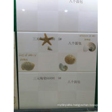 All Kind of Polished Wall Tile