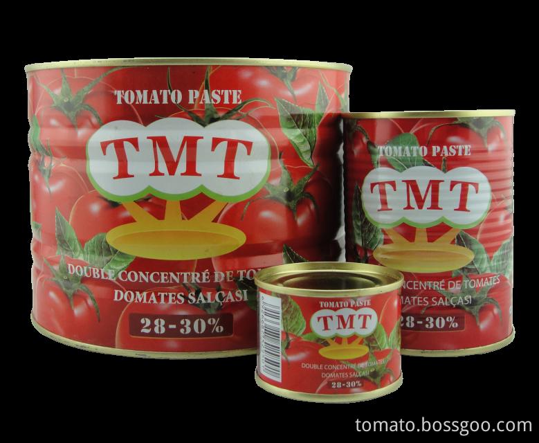 tomato paste6