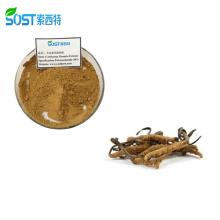 Best Price Cordycepin Cordyceps Sinensis Extract Powder for Anti-Cancer