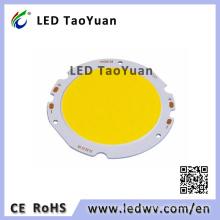 LED 20W COB LED Module for Flood Light