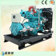 Ensemble de générateur de gaz naturel de 50 kVA Wit Power Engine