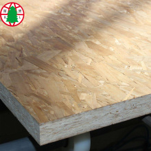 OSB 12mm for furniture and flooring
