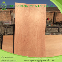 Bbcc Grade Bintangor piel de la puerta de madera contrachapada con tamaño de puerta