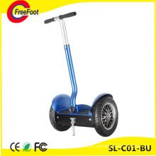 Zweirad Elektrische Balance Sightseeing Auto