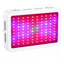 LED élèvent la lumière pour les fruits et légumes Horticulture Hydroponic