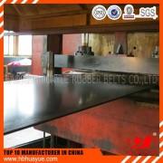 China supplier high quality Oil resistant conveyor belt manufacturer and conveyor belts manufacturer