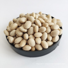 Hot Sale New Large White Crop White Navy Kidney Beans
