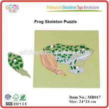 Montessori Tier - Frosch Puzzle