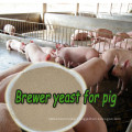 China Suppliers Brewer Yeast Powder with Free Sample
