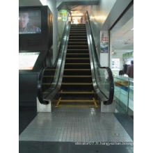 China Best Buys Energysaving Fjzy Escalier personnalisé