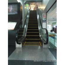 China Best Buys Energysaving Fjzy Customized Escalator
