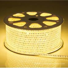 Luz de tira conduzida flexível decorativa ao ar livre / indoor 5050 220V
