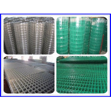 Best Selling Electro Galvanized Welded Wire Mesh