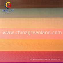 100%Nylon Organza Fabric for Garment Textile (GLLML072)