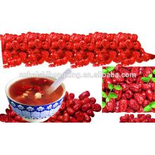 Jujube chino rojo fechas secas jujube
