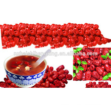 Jujube chinese red dates wholesale