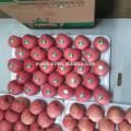 Fresh Fuji Apple Fresh Fruit Style