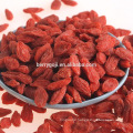 Import Organic 280 Goji Berry