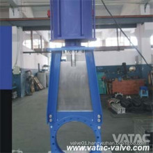 Pneumatic Actuator Slurry Gate Valve