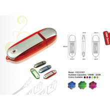 Ovale USB-Flash-Disk (01D15001)