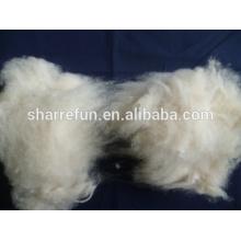 100% pure fine Mongolian cashmere fiber Ivory
