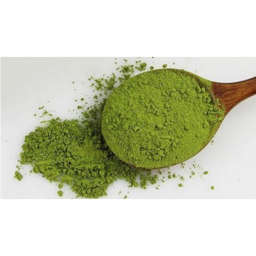 Reliable for Plant Extracts Natural Matcha Powder supply to South Korea Manufacturer