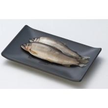 Прямоугольник меламин пластины/меламина блюдо (WT4103)