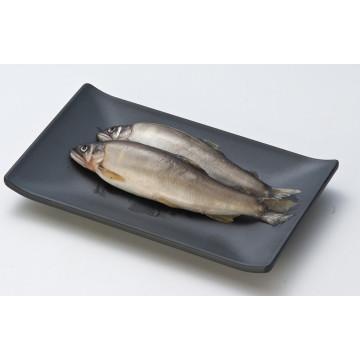 Melamine Rectangle Plate/Melamine Dish (WT4103)