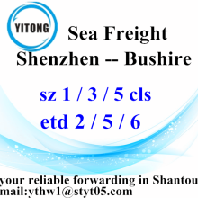 Shenzhen International Freight Delivery om Bushire
