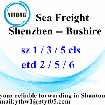 Shenzhen International Freight Delivery à Bushire