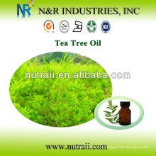 Proveedor confiable Tea Tree Oil