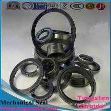 Hartmetall Ring Pumpe Gleitringdichtung