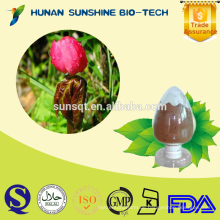 Bester Preis von Sinopodophyllum hexandrum PE 50% Podophyllin / 99% Podophyllotoxin
