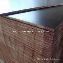 Matériaux de construction de 18 mm Plaques de placage de première qualité fabriquées en Chine