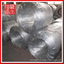 Electro galvanizado Wire Roll (fio de ferro preto haste)