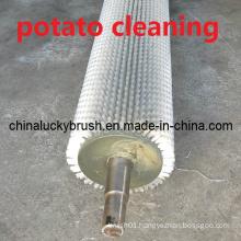 0.5mm Nylon Potato Cleaning or Polishing Brush (YY-344)