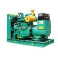 80kW Googol Motor Diesel Power Eletricidade Gerador