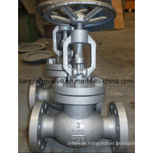 Carbon Steel Flansch End Globe Valve 300lb