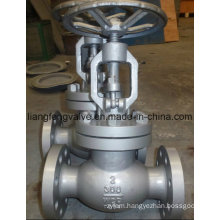 Carbon Steel Flange End Globe Valve 300lb