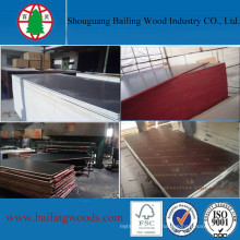 15mm Phenolic Waterproof Film Faced Plywood